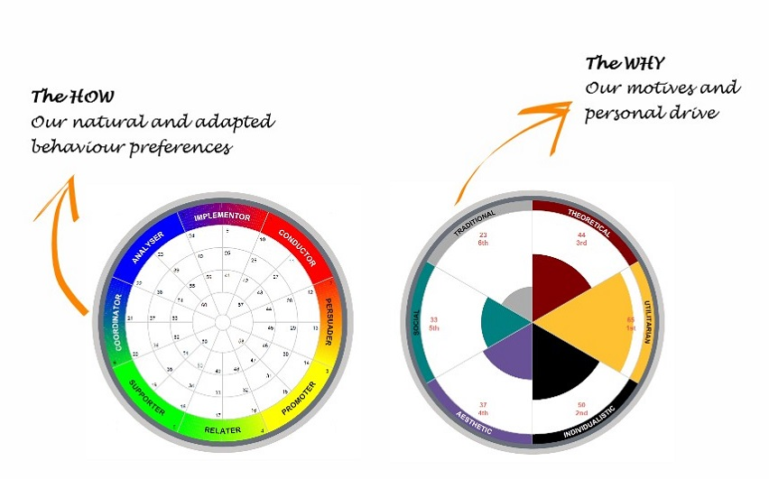 Insights MDI®   comforce-ctc com